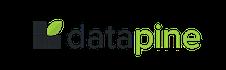 datapine.com  1