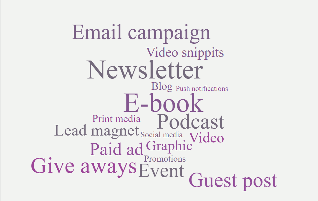 email campaign, video, newsletter, blog, ebook, podcast, print media, lead magnet, social media, video, paid ad, graphic, promo, give aways, guest post